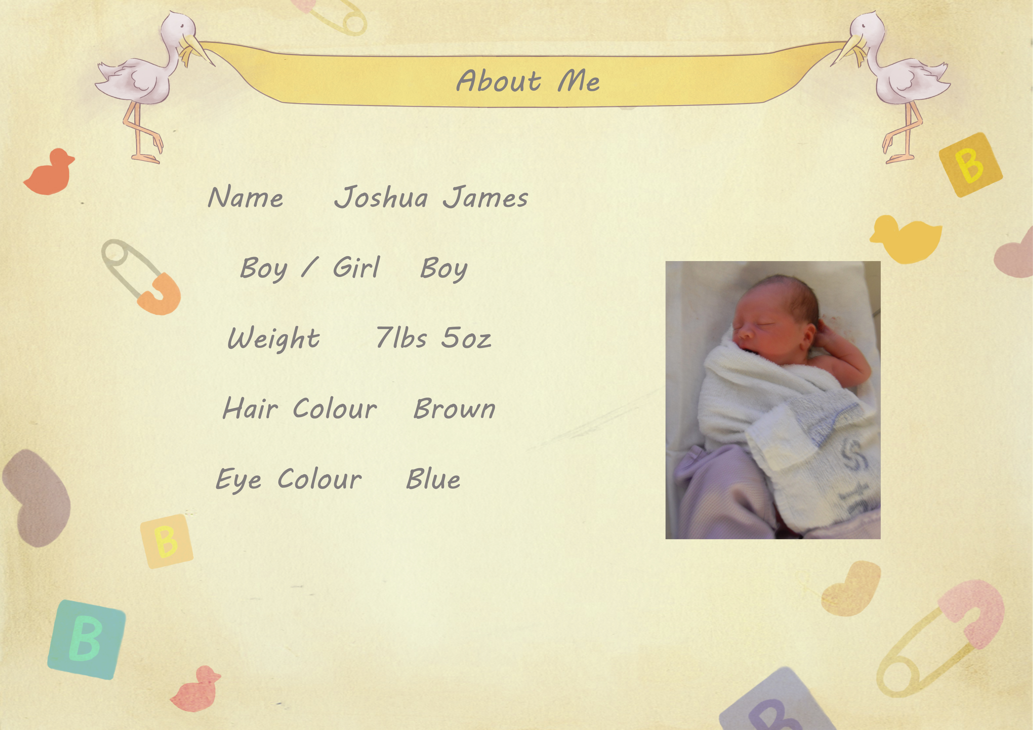 Baby Biography About me page copy